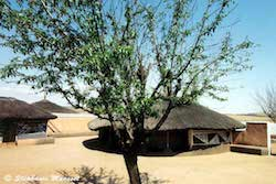 Hutte Ndebele