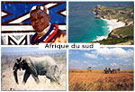 Safari photo en Afrique du sud
