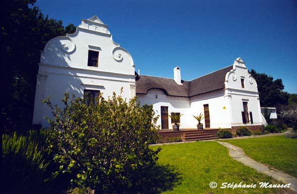 Stellenbosch in South Africa