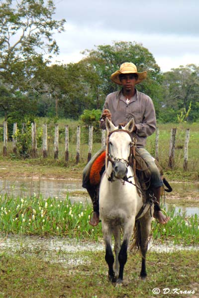 photo de cowboy à cheval au Pantanal Brésil