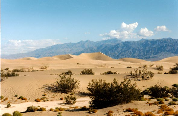dunes de la death valley