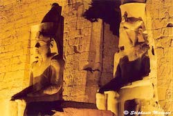 [Egypt temples photos - Luxor temple]