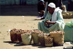 [Egyptian people photos - Old man in Aswan]