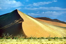 Colorations de dunes en Namibie