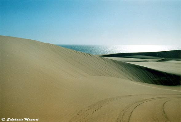 Landscapes Namibia, dunes and ocean