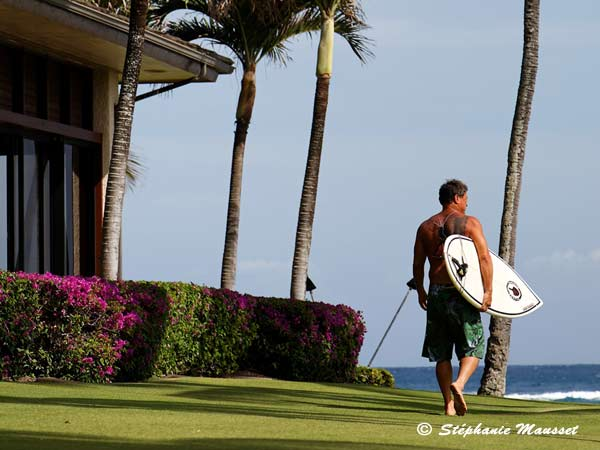 Best of photos surfeur hawaiien